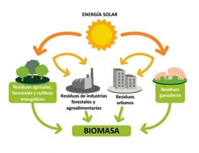 La biomasa es material biologico que puede ser ulitizado como combustible sin tener repercusiones en el medio ambiente.
